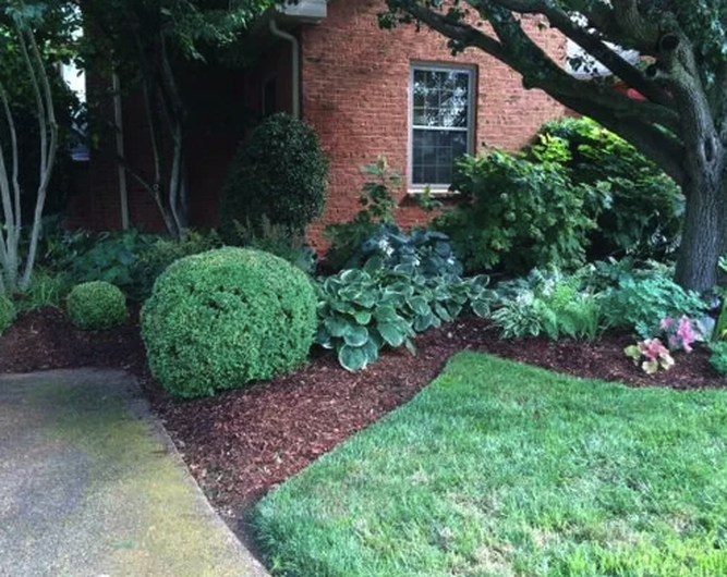 lawn care in birmingham alabama